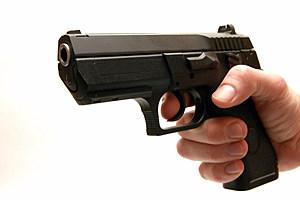 Gun - isolated on white background