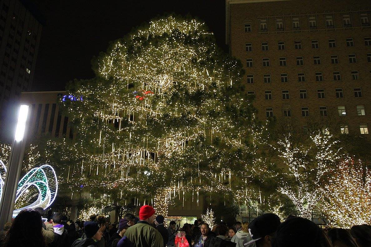 City of El Paso & The Top Places to View Christmas Lights in El Paso